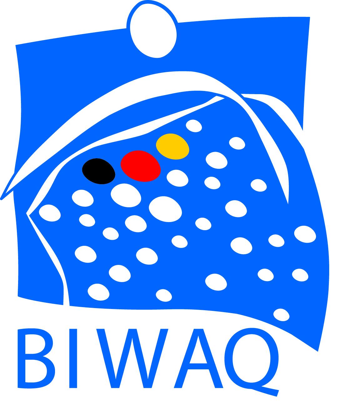 Logo_BIWAQ2 (3)